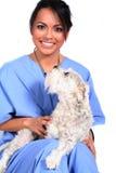 Weibliche Gesundheitspflege-Arbeitskraft mit Hund Lizenzfreies Stockbild