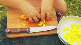Weibliche Hände breiten den gelben Pfeffer aus, der in eine Platte gehackt wird stock video footage