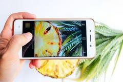 Weibliche Hände, die Ananashintergrundbeschaffenheit fotografieren Lizenzfreies Stockbild
