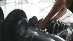 Weibliche Hände, die bodybuildende Dummköpfe im Turnhallenclub nehmen stock video footage