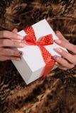 Weibliche Hände, die Geschenk halten lizenzfreies stockfoto