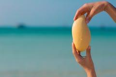 Weibliche Hände, die Mango auf Seehintergrund halten Lizenzfreies Stockfoto