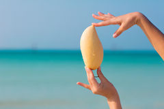 Weibliche Hände, die Mango auf Seehintergrund halten Stockfotografie