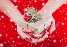 Weibliche Hände, die Weihnachtsgeschenkbox mit Niederlassung des Tannenbaums halten Stockfotos