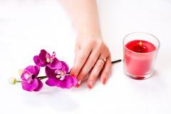 Weibliche Hände mit den Orchideenblumenblättern, Kerze und Nagelkunst Stockbilder