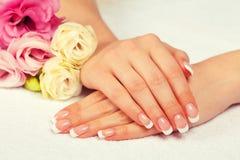 Weibliche Hände mit französischer Maniküre lizenzfreies stockfoto