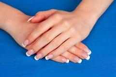 Weibliche Hände mit perfekter französischer Maniküre Stockfotos