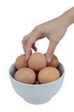 Weibliche Hände setzten ein Ei in eine Schüssel ein, die auf weißen Hintergrund lokalisiert wurde Lizenzfreies Stockfoto