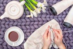 Weibliche Hände stricken eine Decke mit Stricknadeln liebhaberei stockfotografie