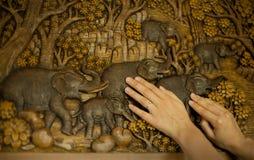 Weibliche Hände und Abbildung von einem Baum Stockfoto