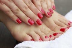 Weibliche Hände und Füße mit einer roten Maniküre und einer Pediküre auf hölzernem Hintergrund lizenzfreie stockfotos