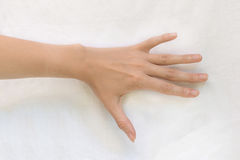 Weibliche Hand stockbild