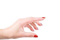 Weibliche Hand auf dem getrennten Hintergrund Lizenzfreies Stockfoto