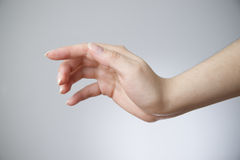Weibliche Hand auf einem grauen Hintergrund Lizenzfreie Stockbilder