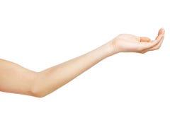 Weibliche Hand auf weißem Hintergrund Stockbild