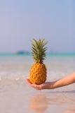 Weibliche Hand, die Ananas auf Seehintergrund hält Stockfoto