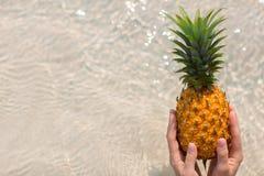Weibliche Hand, die Ananas auf Seehintergrund hält Stockfotos