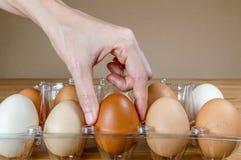 Weibliche Hand, die auf dem Tisch ein Ei vom Plastikeikasten auswählt stockfoto