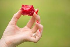 Weibliche Hand, die eine frische reife organische Erdbeere hält lizenzfreies stockbild