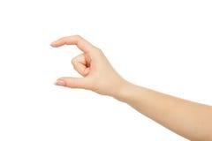 Weibliche Hand, die etwas, Ernte, Ausschnitt misst lizenzfreies stockfoto