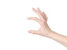 Weibliche Hand, die etwas hält Lizenzfreie Stockbilder