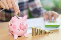 Weibliche Hand, die Münze in Sparschweinnahaufnahme setzt Konzepteinsparungsgeld für Finanzierung lizenzfreie stockbilder