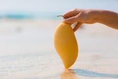 Weibliche Hand, die Mango auf Seehintergrund hält Lizenzfreie Stockfotos