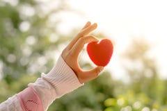 Weibliche Hand, die rotes Herz bis zur Sonne während des Morgens hält Stockfotos