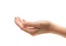 Weibliche Hand getrennt über weißem Hintergrund Lizenzfreie Stockbilder
