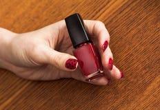 Weibliche Hand mit der roten Maniküre, die Flasche Nagellack hält lizenzfreie stockfotos