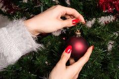 Weibliche Hand setzt rote Weihnachtsdekoration auf Weihnachtsbaum Stockfotos