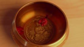 Weibliche Hand setzte Lilie in die tibetanische Gesangschüssel ein stock video footage
