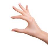 Weibliche Hand trennte lizenzfreies stockfoto