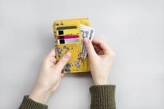 Weibliche Handholdinggeldbörse mit Dollar und Bankkarten auf dem grauen Hintergrund lizenzfreie stockbilder