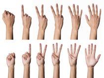 Weibliche Handzählung Stockfotografie
