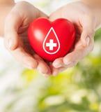 Weibliche Hände, die rotes Herz mit Spenderzeichen halten Stockfotografie