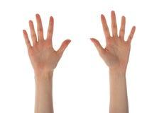 Weibliche Hände, die zehn Finger lokalisiert auf Weiß zeigen Lizenzfreie Stockfotografie