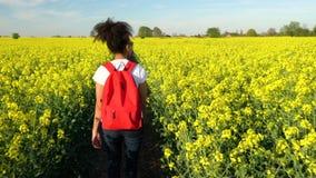 Weibliche junge Frau des Mischrasse-Afroamerikanermädchenjugendlichen, die mit rotem Rucksack wandert stock footage