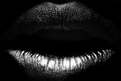 Weibliche Lippennahaufnahme Stockfotografie