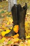 Weibliche Matten Stockfoto