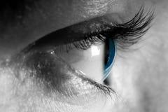 Weibliche Nahaufnahme des blauen Auges Lizenzfreies Stockfoto