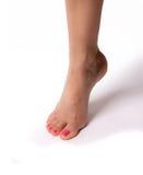 Weibliche schlanke schöne Beine lokalisiert auf weißem Hintergrund Stockfotografie
