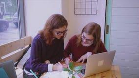 Weibliche Studenten studiert in den Freundinnen des Cafés zwei, die zusammen lernen stock footage