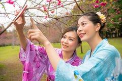 Weibliche Touristenfreunde, die Foto machen Stockfotografie