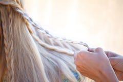 Weibliche würdevolle Hände der Nahaufnahme verwirren blondes Haar in den kleinen Zöpfen stockfotos