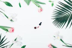 Weibliche Zusammensetzung der Draufsicht mit kosmetischem Serum Lizenzfreies Stockbild