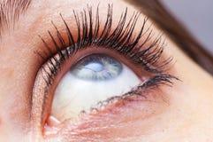 Weiblicher Augenabschluß oben Stockbilder