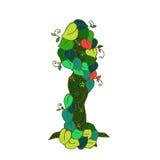 Weiblicher Baum blüht grüne Blätter Stockfotos