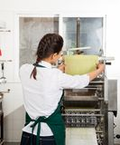 Weiblicher Chef Processing Pasta Sheet in der Maschine Stockbilder