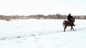 Weiblicher Cowboy reitet ein Pferd an einem Galopp stock footage